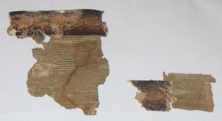 Tapete - noņemta no pārvaldnieka mājas bēniņu stāva sienas