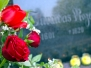 The Day of Maija - the Rose of Turaida 2016
