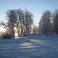 Ziemas rīts