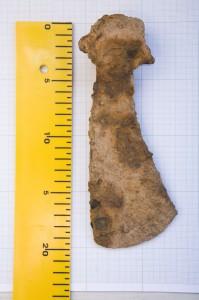 Dzelzs šaurasmens cirvis, atrasts blakus izrakumu laukumam. Tādi cirvji tika izmantoti pirms vairāk nekā tūkstoš gadiem – ap 10. gadsimtu. Alberta Linarta foto