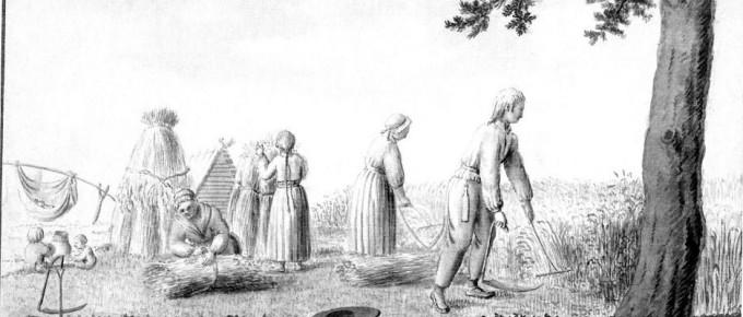 """J. K. Broce Vidzemes zemnieku labības novākšanas veids. 1792. No grām.: Broce, J. K. Zīmējumi un apraksti. 3. sēj. Rīga. """"Zinātne"""", 2002., 31. lpp."""
