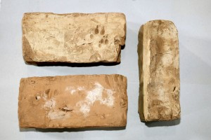 Arheoloģiskās izpētes laikā atrastie ķieģeļi