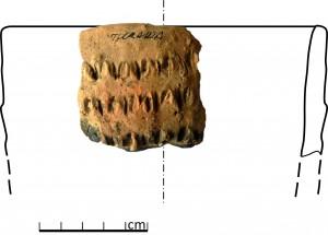 Turaidas pilskalna izpētē atrasts bezripas keramikas trauka fragments ar kniebieniem rotātu virsmu. Baibas Dumpes rekonstrukcijas zīmējums